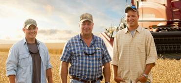 farmers in a yellow field